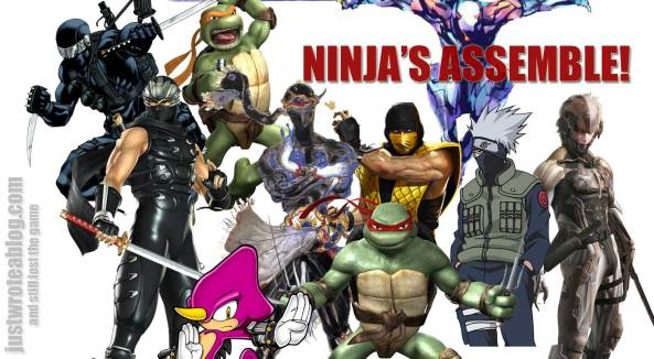 Our picks of video game ninja's
