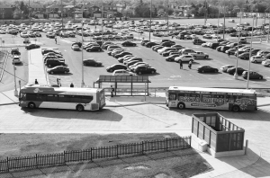 Mississauga Transit Buses waiting for passengers at a GO Commuter Station