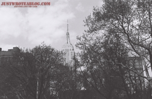 Love the contrast of the trees, and the Empire State Building peeking out, just wish the ISO was set properly.