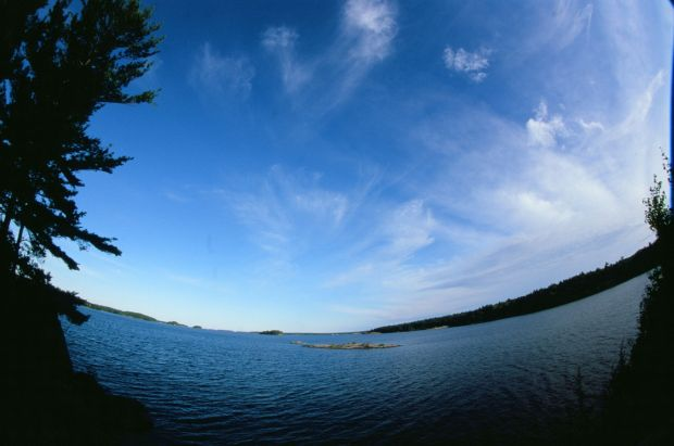 Morning skies along the lighthouse trail, fisheye style! Killbear Provincial Park.