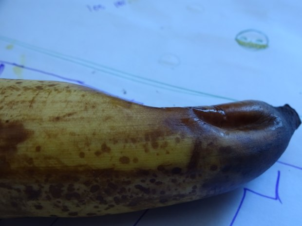 I hate it when my banana gets smushed in my bag