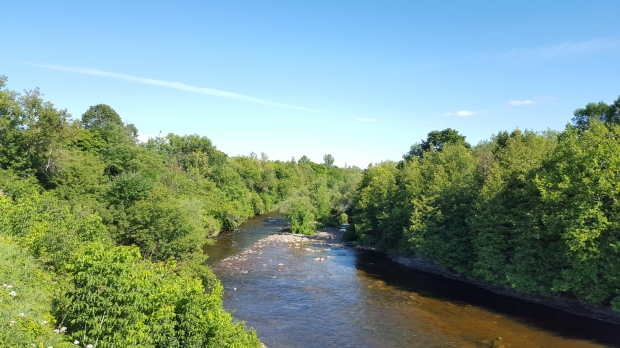 View from the Centennial Park Footbridge in Eganville, ON