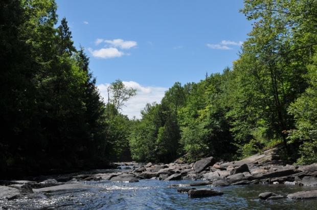Oxtongue River (Nikon D300, AF-S 35mm DX NIKKOR f/1.8G @ f16, 1/125, ISO 200)