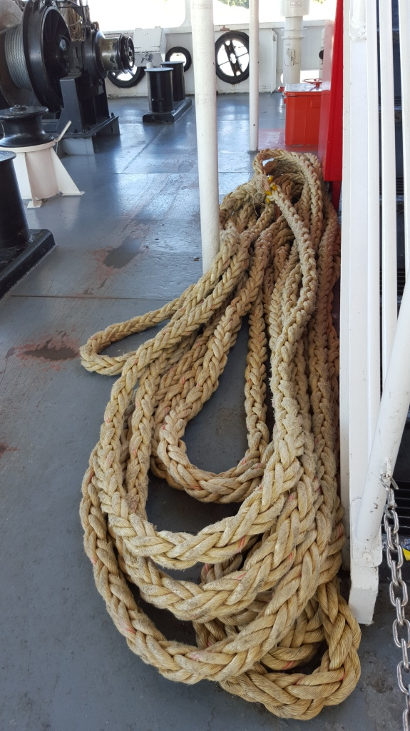 Random photo of rope found on the one of the ship's decks.