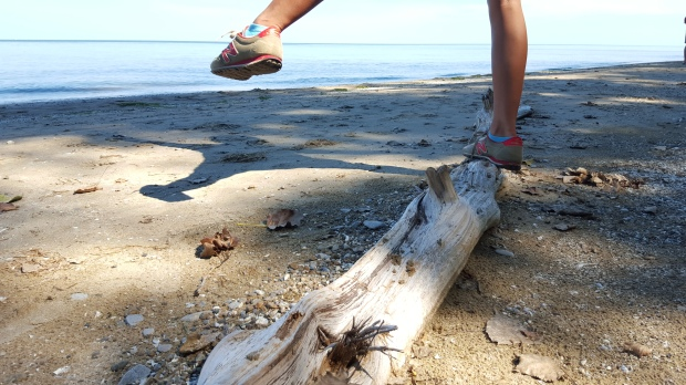 """Balancing on driftwood"" Pelee Island Lighthouse Trail"